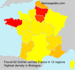 Surname Dufrien in France