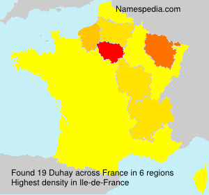 Surname Duhay in France
