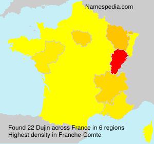 Surname Dujin in France
