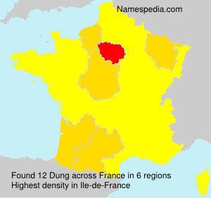 Surname Dung in France