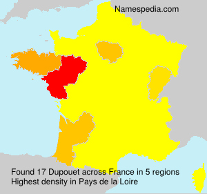 Surname Dupouet in France
