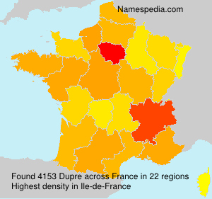Surname Dupre in France