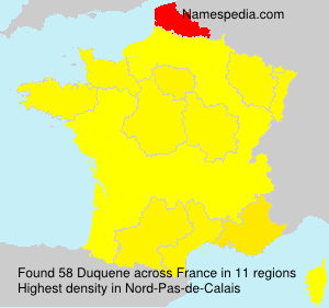 Surname Duquene in France