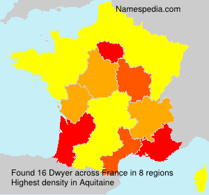 Surname Dwyer in France