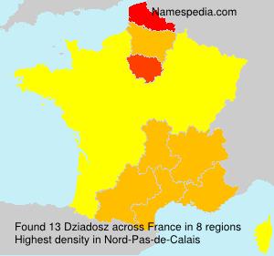 Familiennamen Dziadosz - France