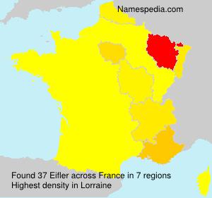 Surname Eifler in France
