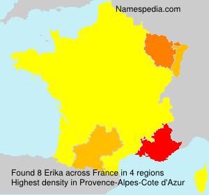 Surname Erika in France