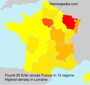 Surname Erler in France