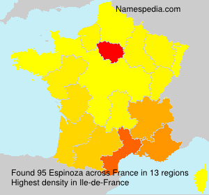 Surname Espinoza in France