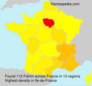 Surname Fahim in France