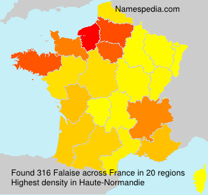 Surname Falaise in France