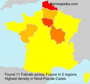 Surname Falinski in France