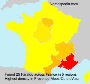 Familiennamen Faraldo - France