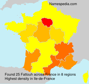 Surname Fattouh in France