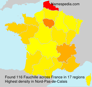 Surname Fauchille in France