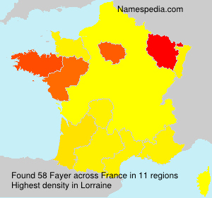 Surname Fayer in France