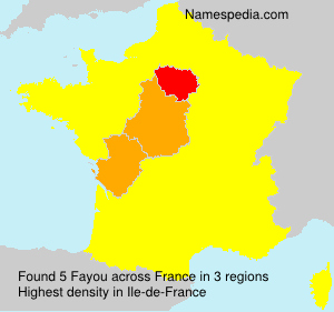 Surname Fayou in France