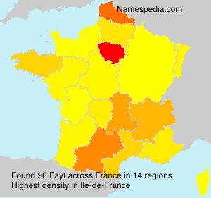Surname Fayt in France