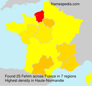 Surname Fehim in France
