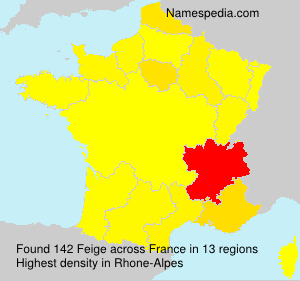 Surname Feige in France