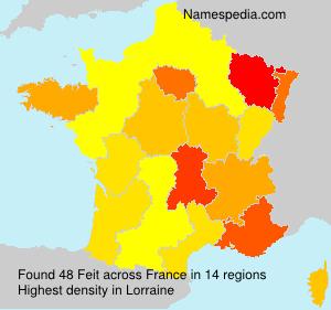 Surname Feit in France