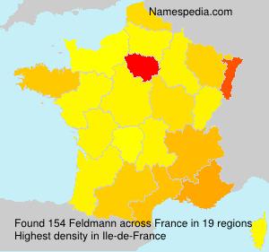 Surname Feldmann in France