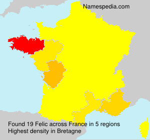 Surname Felic in France