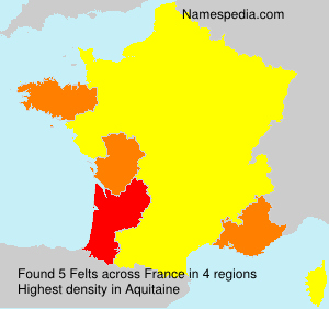 Surname Felts in France