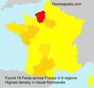 Surname Feras in France