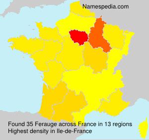 Familiennamen Ferauge - France