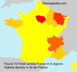 Surname Feriel in France