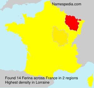 Surname Ferina in France