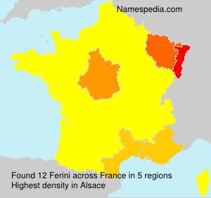 Surname Ferini in France