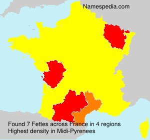 Familiennamen Fettes - France