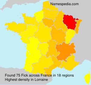 Surname Fick in France