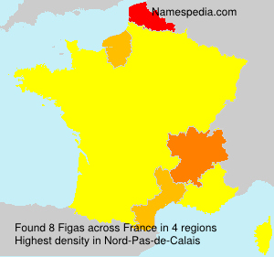 Surname Figas in France