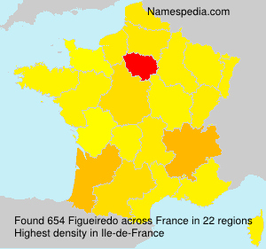 Surname Figueiredo in France