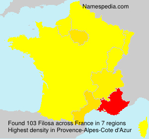Surname Filosa in France