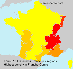 Familiennamen Filz - France