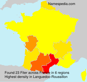 Surname Fiter in France
