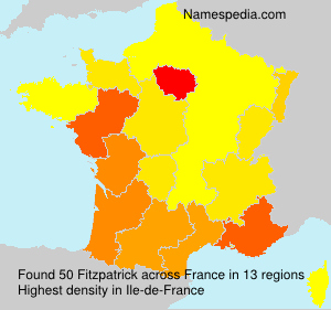 Surname Fitzpatrick in France