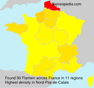 Surname Flamein in France