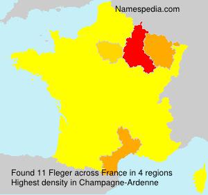 Familiennamen Fleger - France