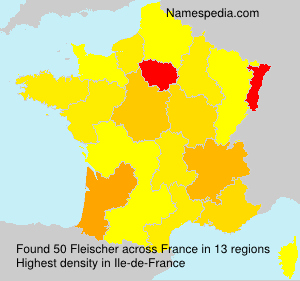 Surname Fleischer in France
