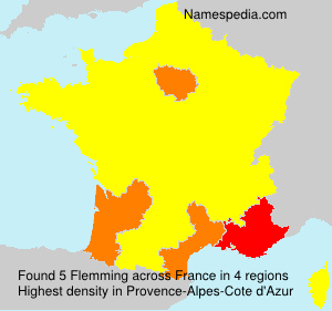 Surname Flemming in France