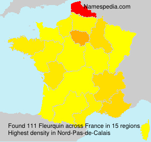 Surname Fleurquin in France