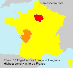 Fligiel