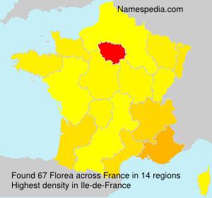 Familiennamen Florea - France