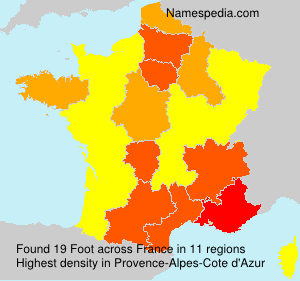 Surname Foot in France