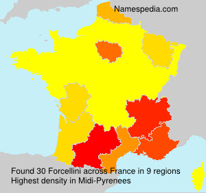 Surname Forcellini in France